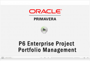 CDP Oracle Primavera P6 Demo