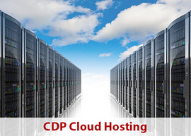 CDP Project Management - Cloud Hosting