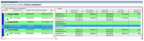 cost loading in primavera p6 pdf